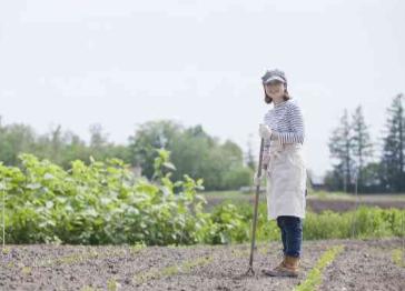 農作業.png